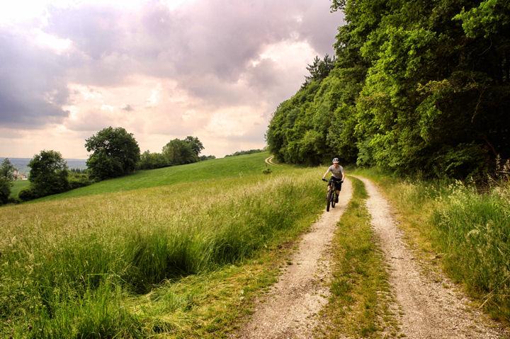 grassland_ph