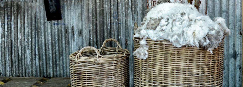 wool-lab