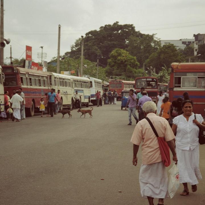 kandy-bus-stop_vintage